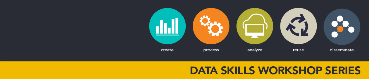 Data skills workshop series