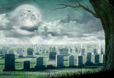 Spooky halloween looking image with grey sky, clouds, tree. At a graveyard.